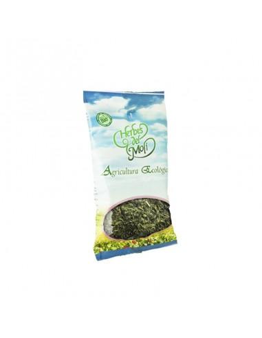 Llantén. hojas Bio Herbes del Molí